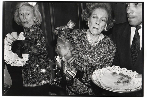 Iris-Love-and-Brooke-Astor-with-Just-Desserts-and-Dolly-Astor-at-a-Dachund-Party-Manhattan-New-York-1990_1512 x 1008